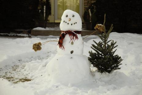 snowman-1139260_1920
